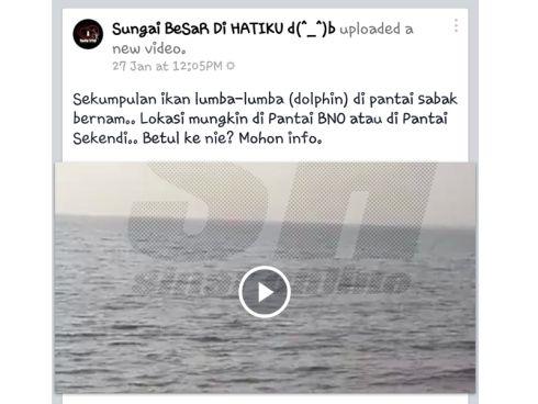 Ikan Lumba-Lumba Muncul Di Perairan Sabak Bernam Satu Fenomena Pelik Jabatan Perikanan Selangor menjelaskan penemuan ikan lumba-lumba yang didakwa penduduk dan nelayan di Perairan Sabak Bernam seperti yang disebarkan dalam laman sosial Facebook adalah satu...