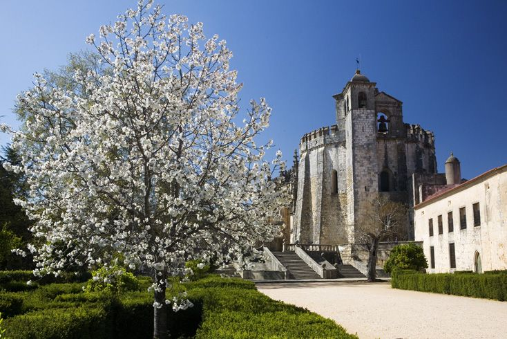 Almond blossom in front of the Convent of Christ, originally a Templar stronghold built in the 12th century