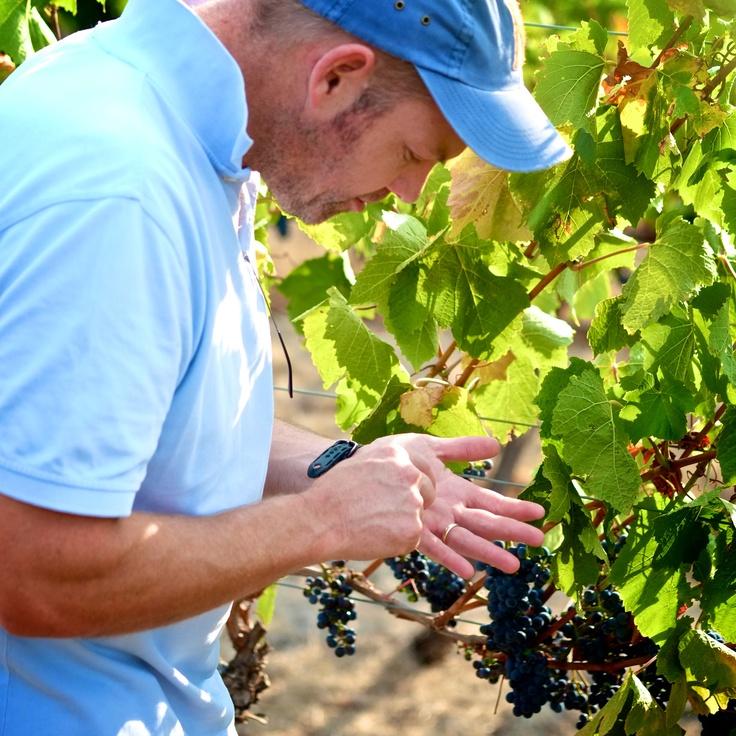 Mitchell Harris: John checking out our Macedon Pinot Noir...