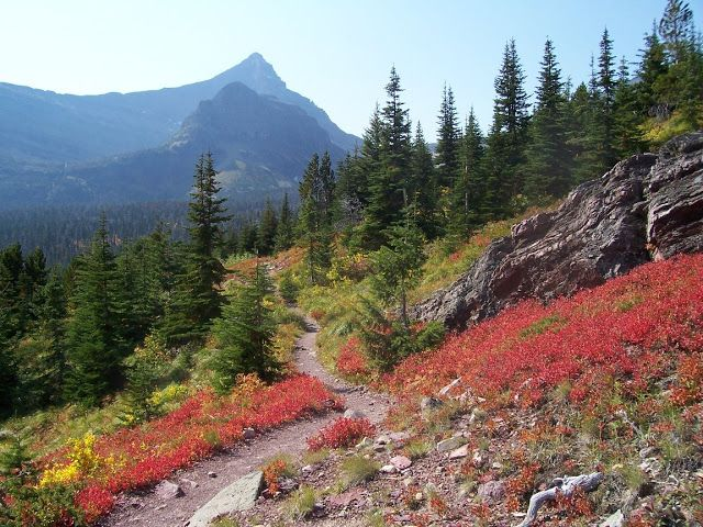TOP WORLD TRAVEL DESTINATIONS: Best National Parks  to Visit in the US