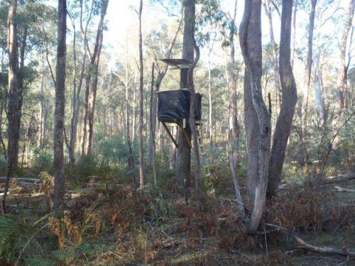 1000 ideas about deer blind plans on pinterest for Build your own tree stand