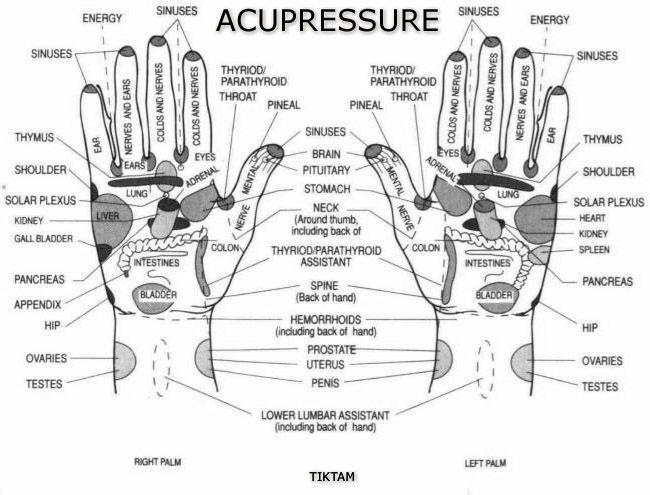 38 best images about acupressure on pinterest