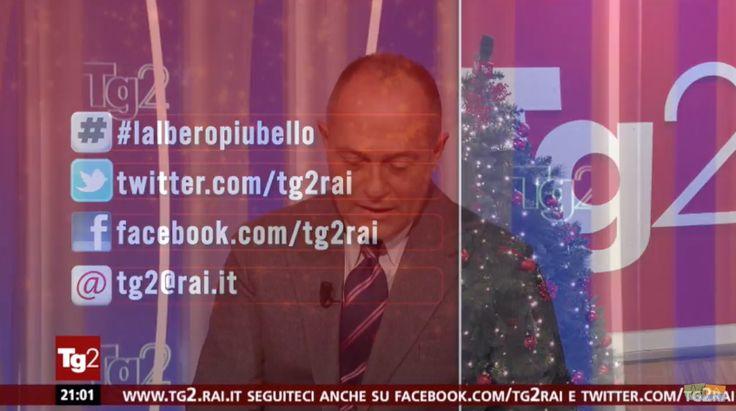 Casagiove, l'albero di Natale di piazza degli Eroi finisce al Tg2 (VIDEO) a cura di Redazione - http://www.vivicasagiove.it/notizie/casagiove-lalbero-di-natale-di-piazza-degli-eroi-finisce-al-tg2-video/