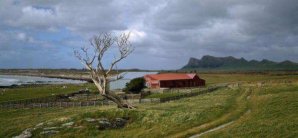 Waitangi West. Chatham Islands. Andris Apse
