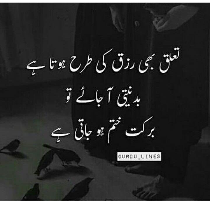 Quotes In Urdu: 3710 Best Urdu Quotes Images On Pinterest
