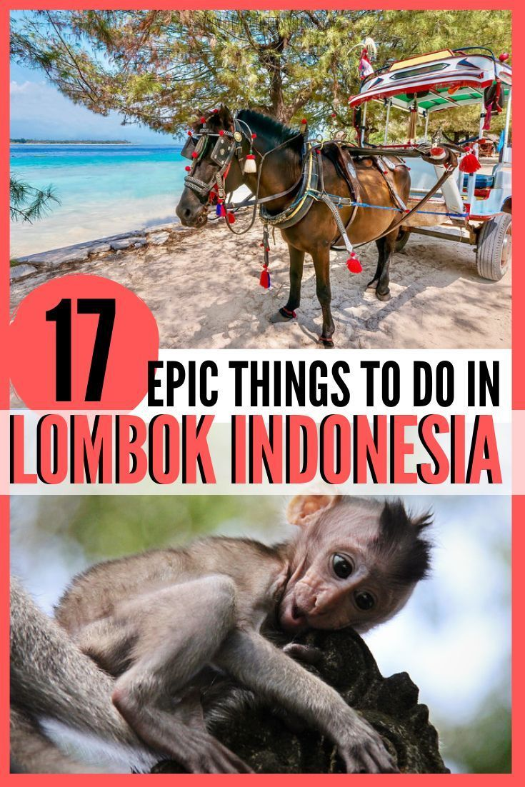 17 Epic Things to do in Lombok, Indonesia