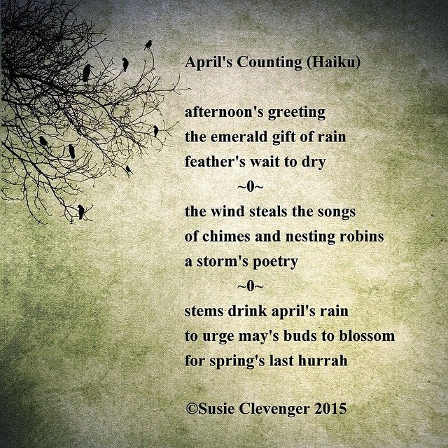 143 Best Images About Poetry And Poetry Quotes On