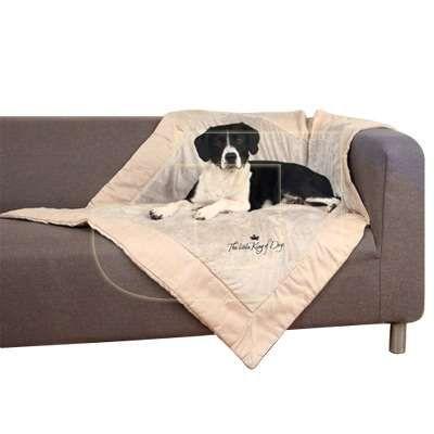 Mobilyalarınızı kir ve tüyden koruyacak köpek battaniyesi! Hem de %10 indirimle satışta!  https://www.juenpetmarket.com/trixie-decke-cift-tarafli-kopek-battaniyesi-125-x-100-cm-u-20682