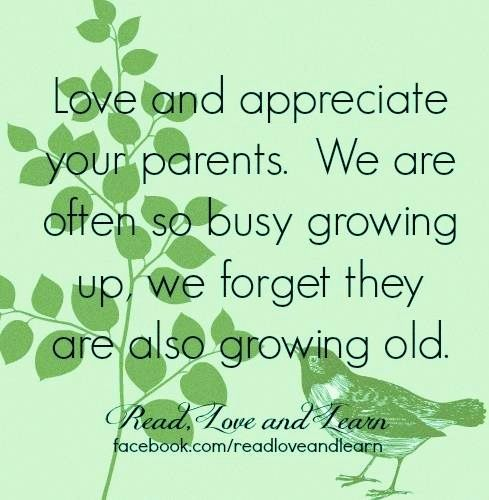 appreciate your parents essay Browse famous parents quotes about appreciation on searchquotescom browse famous parents quotes about appreciation on searchquotescom login sign up topics you never appreciate your parents good sense and wisdom, until you miss an opportunity where you needed it the most 23 up, 2 down.