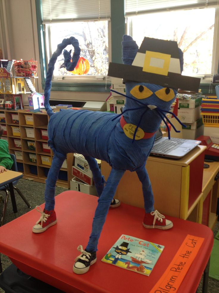 Classroom Mascot Ideas ~ Best images about pete the cat on pinterest