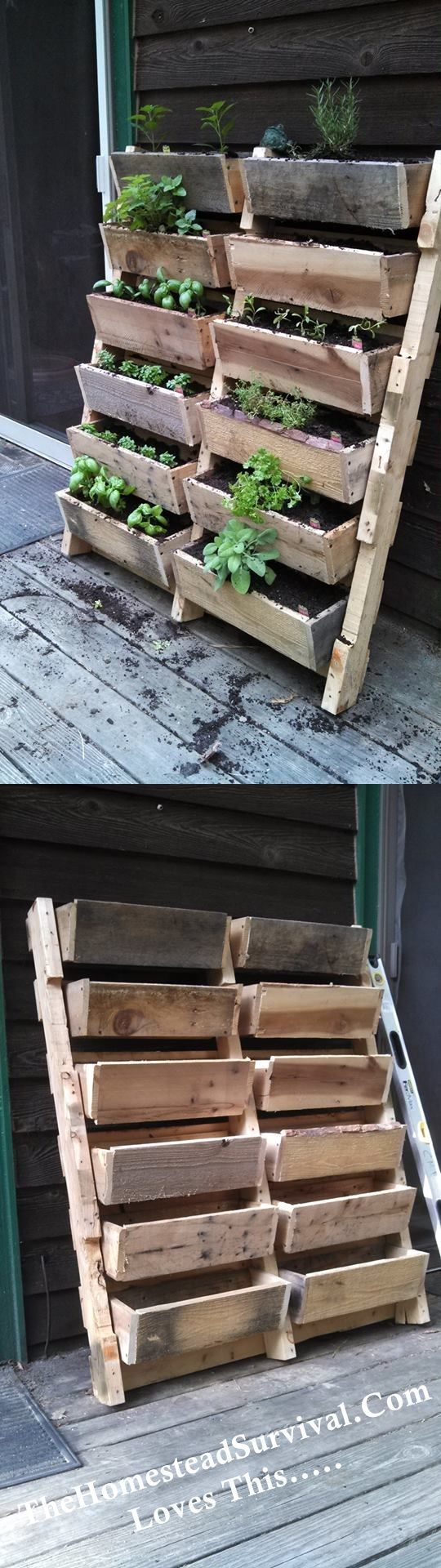 Vertical Gardening // terrific use of space for small yards or porches via Homestead Survival #springfever #apartmentgardening