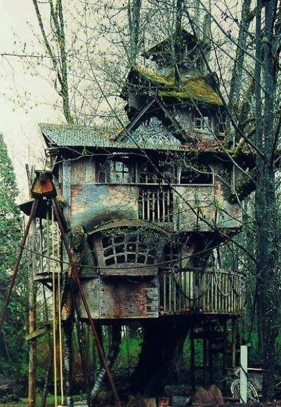 10 Epic Treehouses Cooler Than Your Apartment. Awesome Tree HousesBeautiful  ...