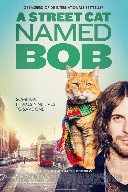 Buy Online A Street Cat Named Bob Book