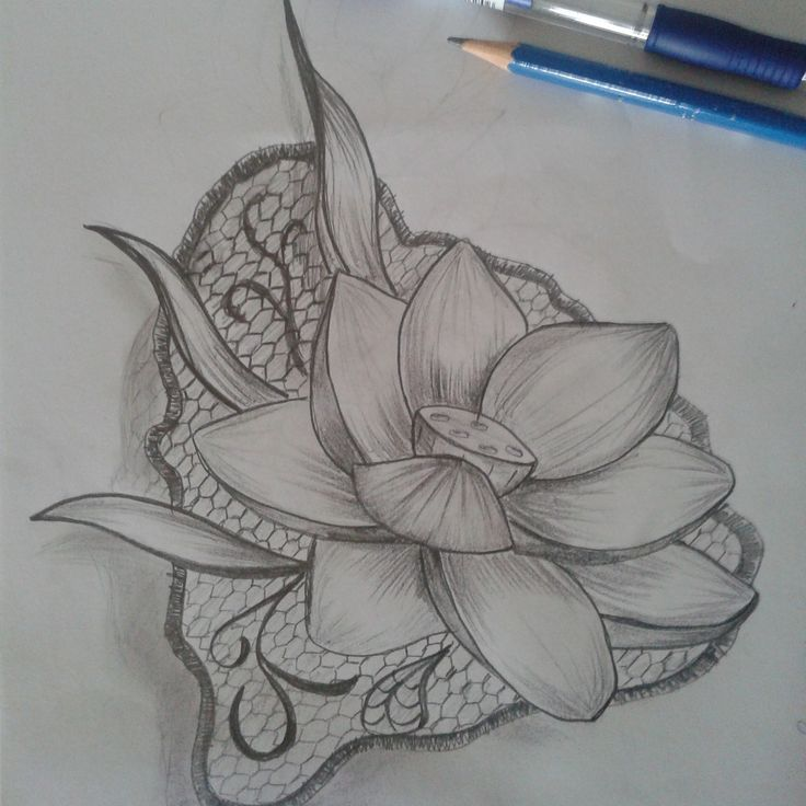 Fiore di loto e pizzo
