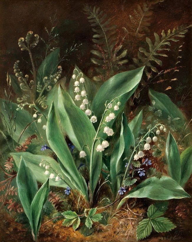 Lilies of the Valley by Albert Durer Lucas 1871, (one of a pair)