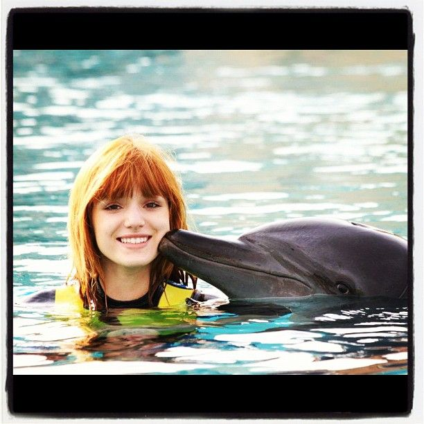 bella thorne and a dolphin sooooooooooooooooooooooooooooooooooooooooooooooooooooooooo..................................... cute!