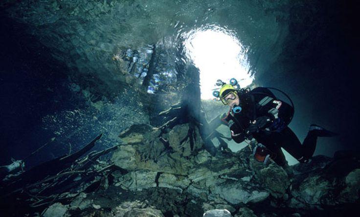 specific diving spot - Google 검색