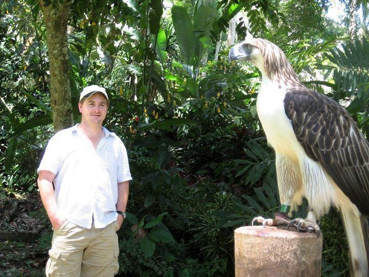 Harpy eagle hunting monkey - photo#36