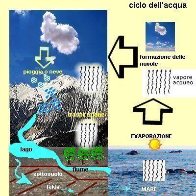 ciclo dell'acqua, evaporazione, traspirazione, precipitazione