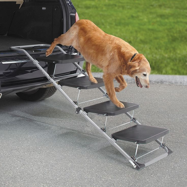 The Portable Pet Staircase or Ramp - Hammacher Schlemmer