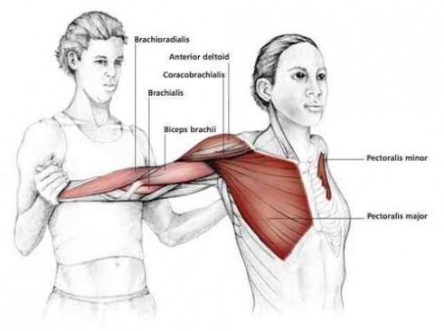 common shoulder stretching exercises  frozenshoulder