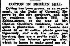 Barrier Miner (Broken Hill, NSW : 1888 - 1954), Monday 17 May 1920, page 1
