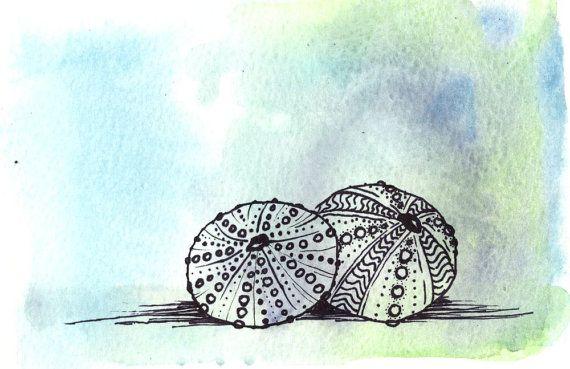 Riccio di mare pittura acquerello di riccio di mare, Seashell pittura, Seashell arte astratta, illustrazione di riccio di mare, oceano animale arte