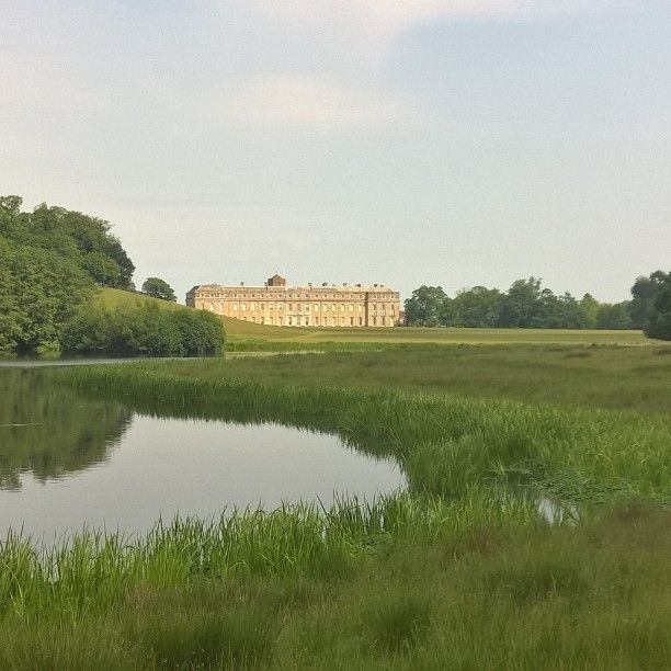 Petworth rising from the Capability Brown parkland today