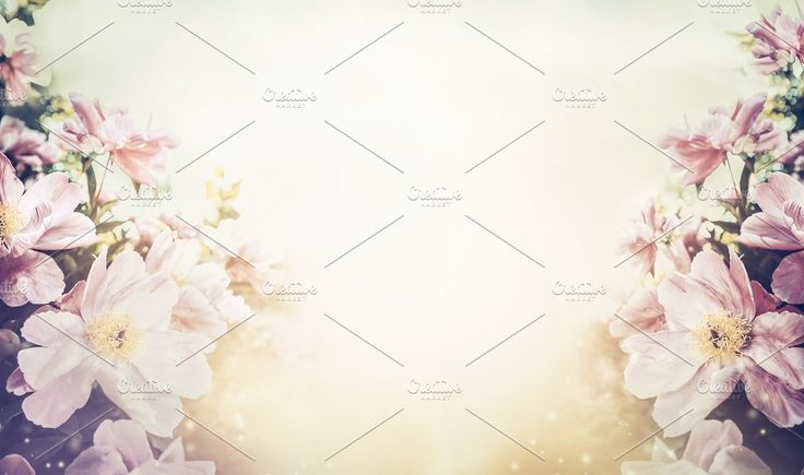 Floral pastel color background by VICUSCHKA on @creativemarket