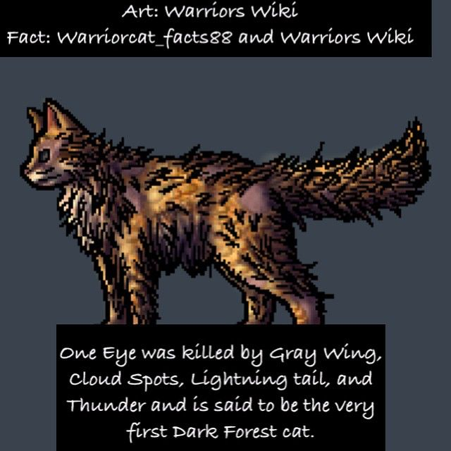 1460 Best Warrior Cats Images On Pinterest