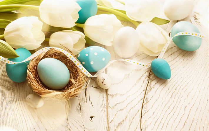 Download wallpapers Easter, spring, decoration, 1 April, decorated blue eggs, white tulips, spring flowers