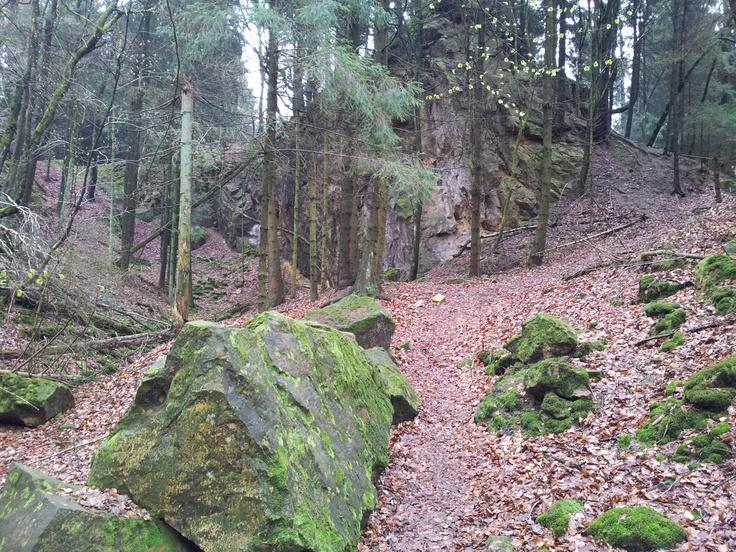 Sandsteinbruch in der Nähe des Hohnsberges bei Bad Iburg/Hilter (Niedersachsen)