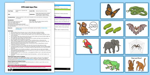 Monkey Puzzle Story Activity EYFS Adult Input Plan and Resource Pack