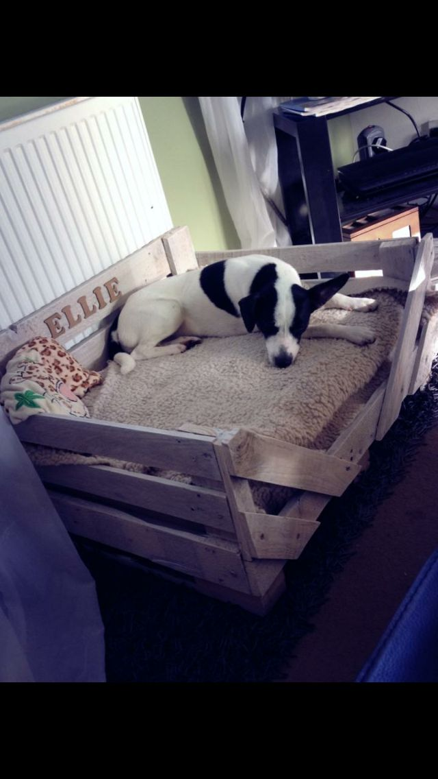 Pallet dog bed!!!!
