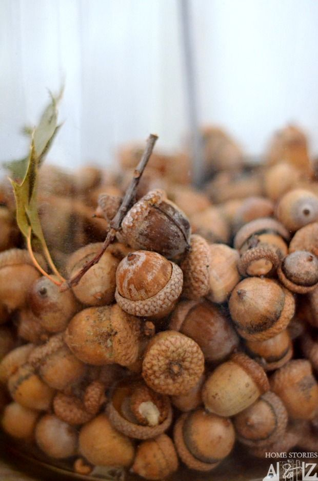 How to paint acorns runners tables and first story for How to preserve acorns for crafts