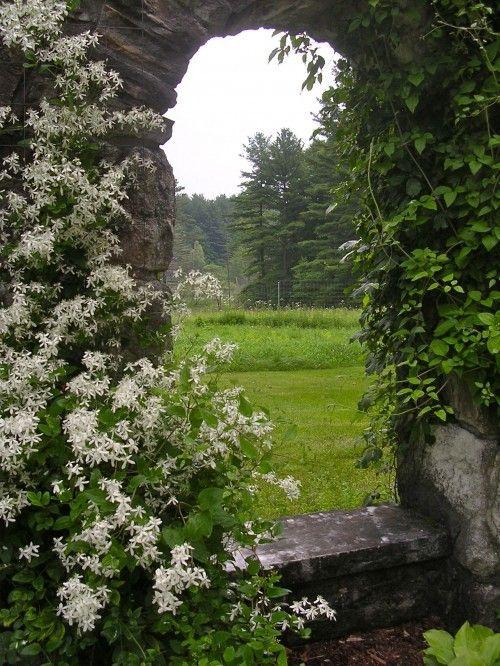stone seat: Doors, Arches, English Gardens, Mount Gardens, Gardens Windows, Traditional Landscape, Stones, The Secret Gardens, Edith Wharton