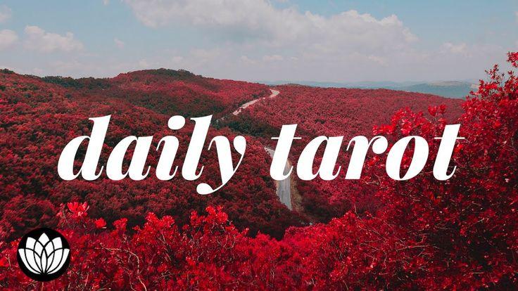 #Sunday #Daily #Tarot #Reading #February #26, 2017 by White Lotus Tarot