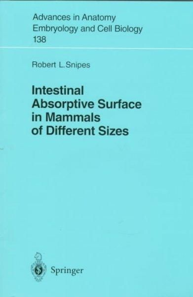 Intestinal Absorptive Surface in Mammals of Different Sizes