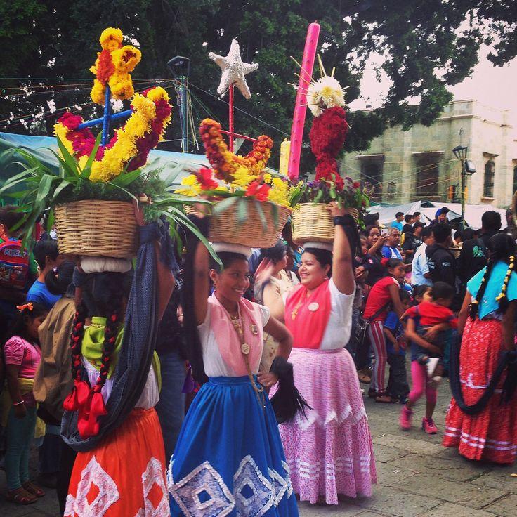https://flic.kr/p/pWZ2uX | Bailes | Catedral de Oaxaca