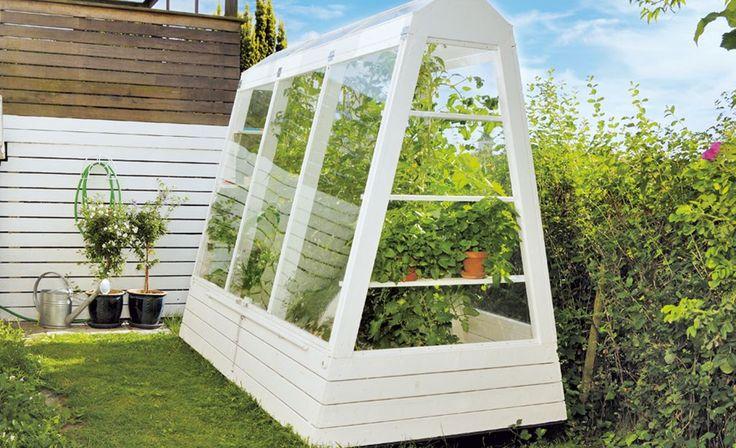 Platzsparend, aber funktionell: Das Gewächshaus passt auch in kleine Gärten. Wir zeigen Schritt für Schritt, wie man es selbst baut.