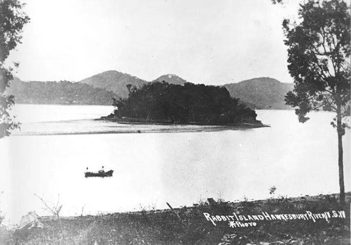 Rabbit Island,later known as Peat Island,Hawkesbury River in 1900.A♥W