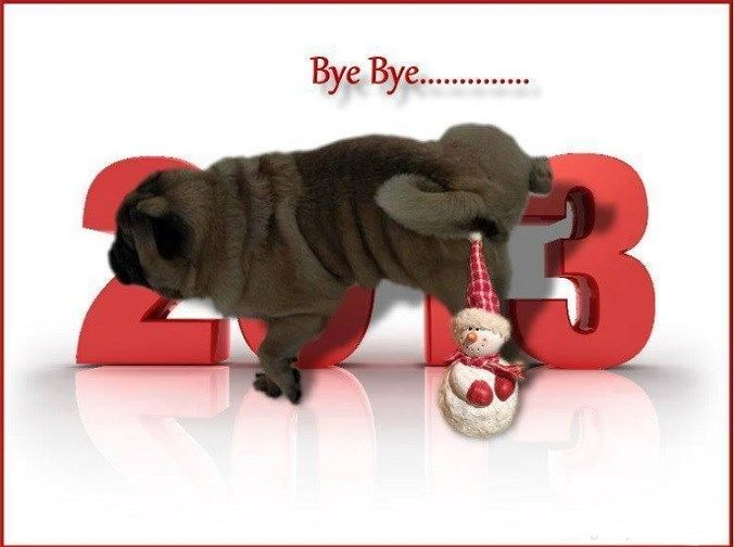 funny pug dog meme pun lol pug new year  bye bye 2013