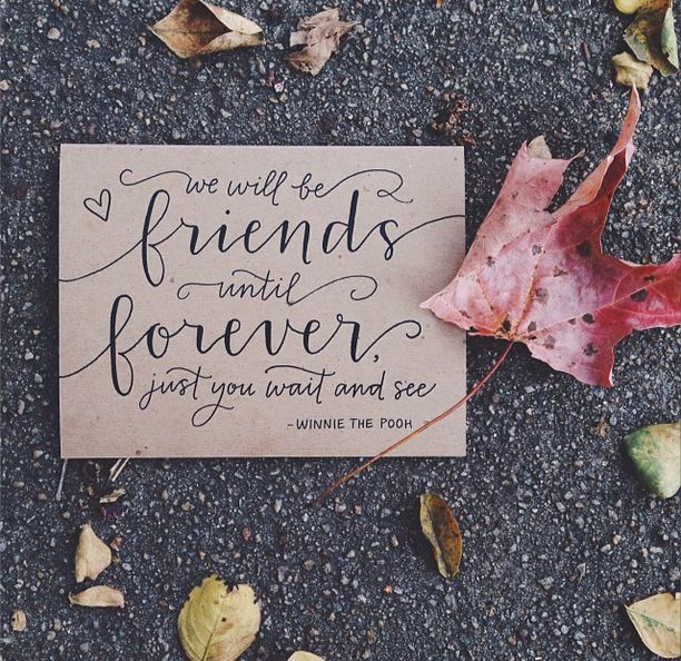 We will be friends until forever, just you wait and see. -Winnie The Pooh