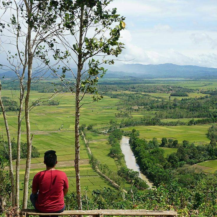 Bukit Blitarejo Lampung Pemandangan Persawahan yang Memanjakan Mata - Lampung