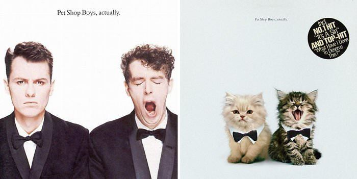 Replacing Musicians With Cats In Famous Album Covers Famous Album Covers Album Covers Pet Shop Boys