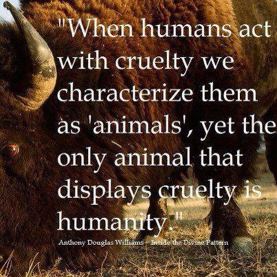 Animal cruelty is a human trait