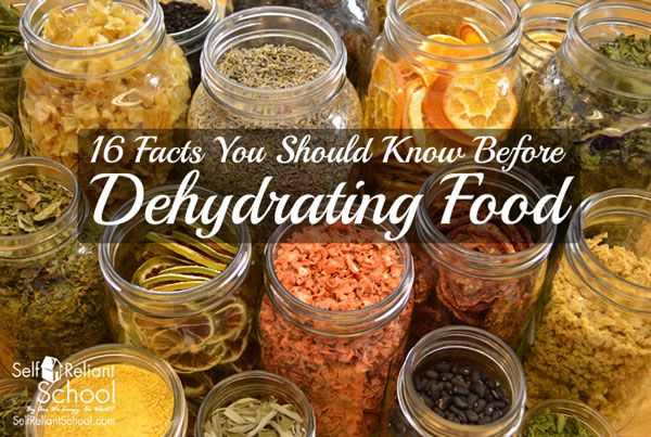16 Facts You Should Know Before Dehydrating Food