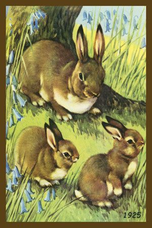 Rabbit and Bunnies. 1925 Print. Quilt Block printed on cotton. Ready to sew.  Single 4x6 block $4.95. Set of 4 blocks with free Wall Hanging Pattern $17.95.