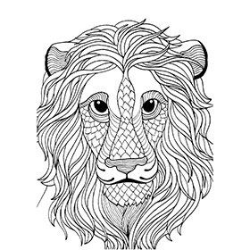 141 best Лев.Тигр. images on Pinterest | Coloring books, Colouring ...