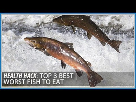 1000 images about health hacks on pinterest health for What fish is healthy to eat